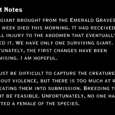 Another note regarding red lyrium tests on giants, found near the cages
