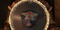 Caridin's Shield