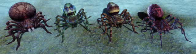 File:Spectacular Spiders.png