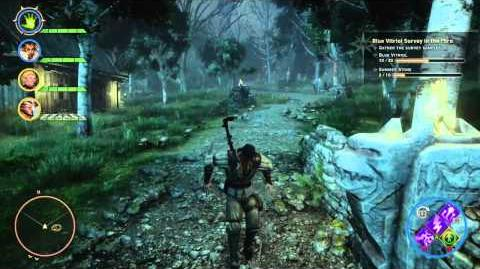Dragon Age™ Inquisition - Common bug