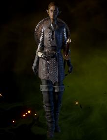 File:Crafted Defender Coat.png