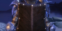 Heavy Wooden Shield