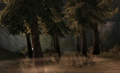 Area-Wooded Hills.png