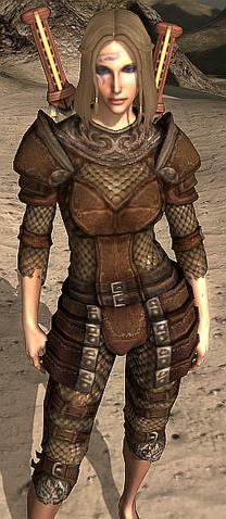 File:Dragon Hunter's Hauberk.png
