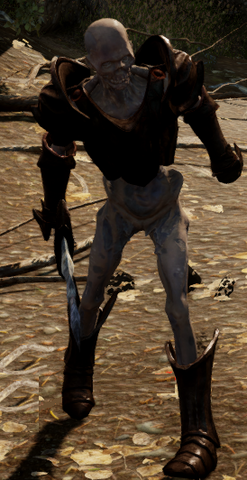 File:Armored Corpse DAI.png
