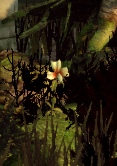 File:DAO Wilds Flower.png