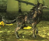 Creature-Blight Wolf.jpg