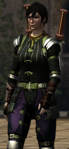 File:Mercenary's Layered Tunic (Dragon Age II).png