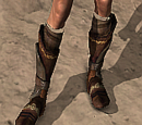Codex entry: Blackfeather Boots