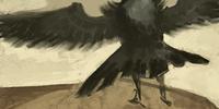 Codex entry: Quillback