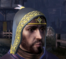Grey Warden Cowl