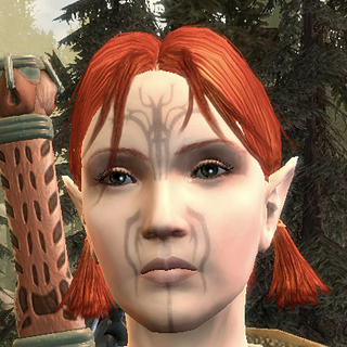 an unnamed Dalish hunter in the clan of the Dalish Elf Origin (simple version)