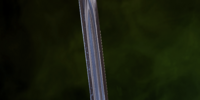 Avvar Raider Sword