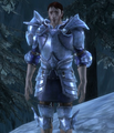 Commander's Plate Armor.png