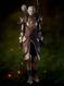 Dragon Hunter Armor.png