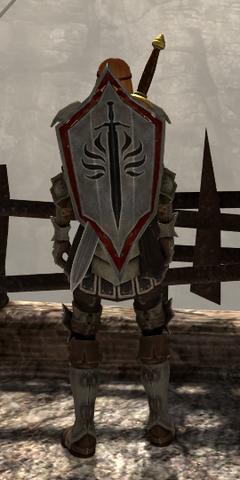 File:Templar Defender.png