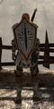 Templar Defender.png