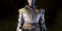 Defender Coat