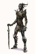 Inquisition Arlathan Elves concept 3