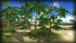 Papaya Island DBO
