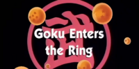 Goku Enters the Ring