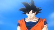 Goku2013Trailer.png