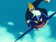 SharkBike