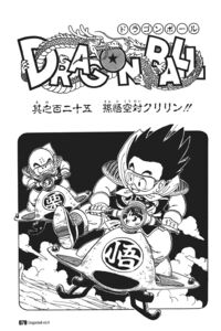 Goku vs. Kuririn