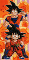 Dragon ball029