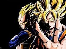 File:Goku and vegeta.jpg