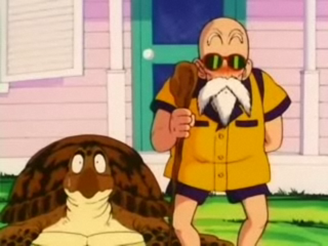 File:Turtle&Roshi.png