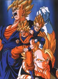 File:Goku vegeta.jpeg