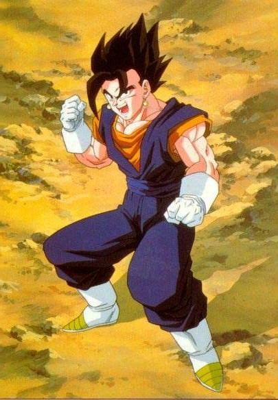 ファイル:Vegetto photo.jpg