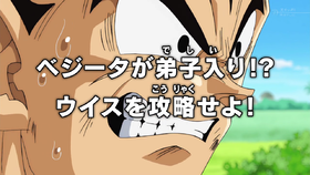 Arquivo:Episode 16 DBS.png