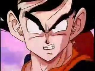 File:Goku Going To Fight Saiyans.JPG