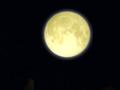 BT3The Moon