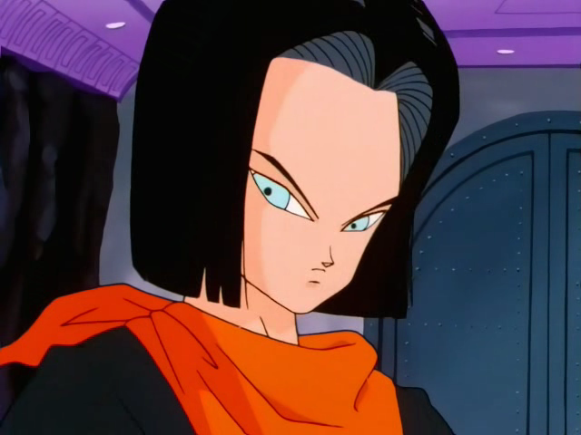 File:Android17NV.png
