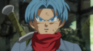 SOS From the Future Trunks