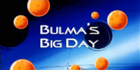 Bulma's Big Day