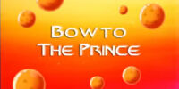 Bow to the Prince