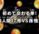 Cruzando punhos pela primeira vez! Androide Nº 17 vs. Son Goku!