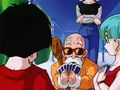 Dbz235 - (by dbzf.ten.lt) 20120324-21100474