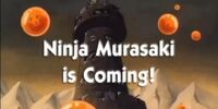 Ninja Murasaki is Coming!