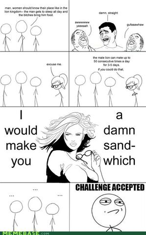 File:Memes-challenge-accepted-miss-impregnable.jpg