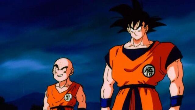 File:Goku And Krillin.JPG