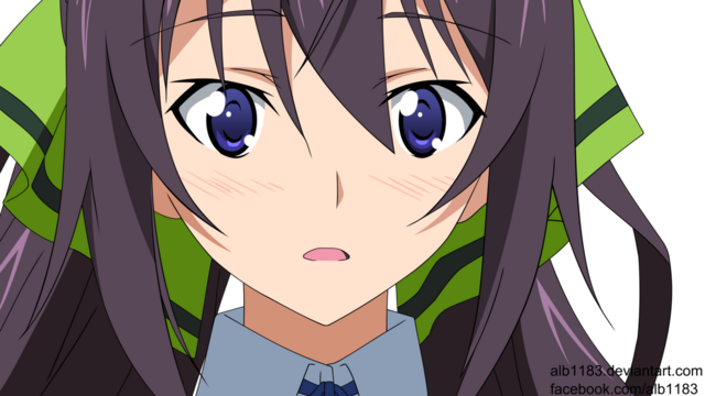 File:Houki shinonono infinite stratos by alb1183-d5miwao.png