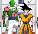 Son Goku (Universo 8)