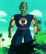 Aged king piccolo