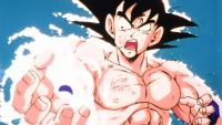 GokuSpiritBombVegeta