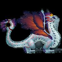 Dreamcatcher Dragon 3